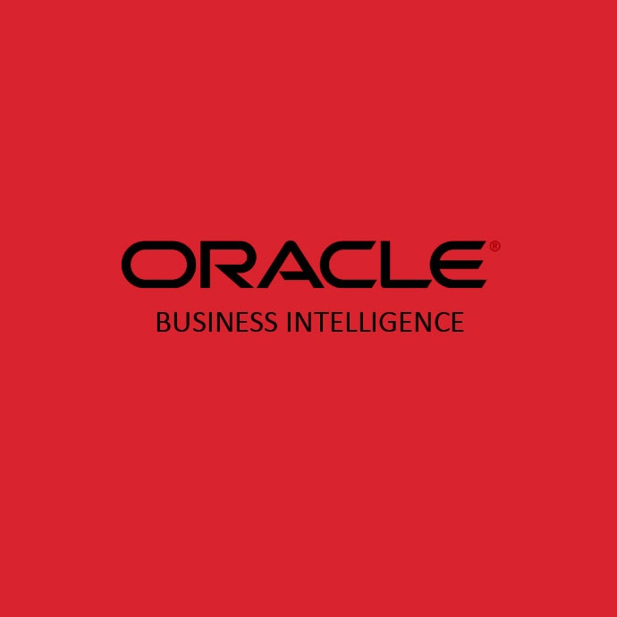 Partner de Oracle BI España